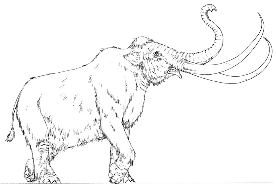 Mammoth_by_Mike_S_Miller.jpg