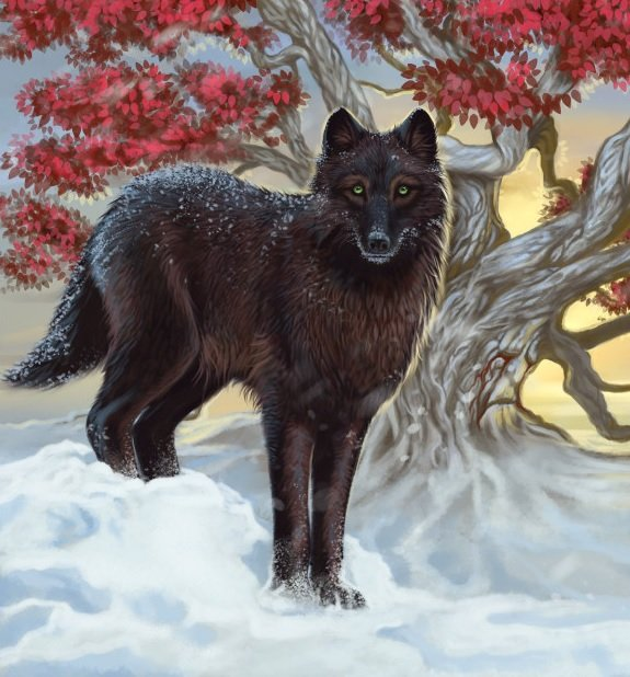 Shaggydog A Wiki Of Ice And Fire