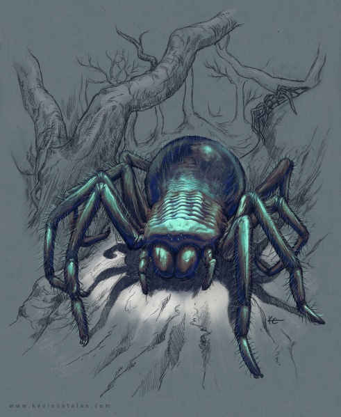 File:IceSpider by Kevin Catalan.jpg