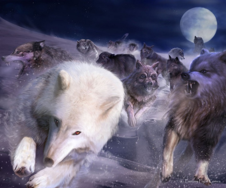 File:Thaldir Wolves of the North.jpg