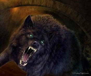 Game Of Thrones Boy Cat Names