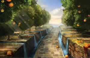 Dorne Water Gardens