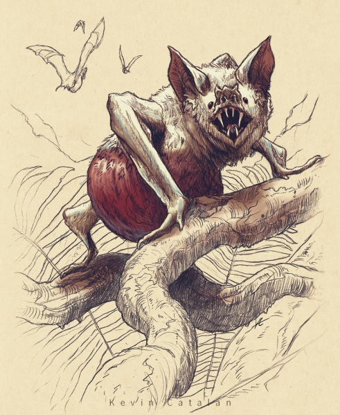 File:WhiteVampireBat by Kevin Catalan.jpg