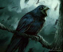 Darek Zabrocki three eyed crow.jpg