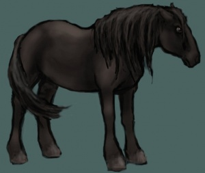 Stranger Horse A Wiki Of Ice And Fire