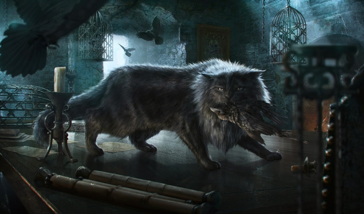 Balerion (cat) - A Wiki of Ice and Fire